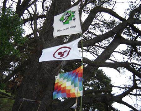 banderas en Cruz del Sur
