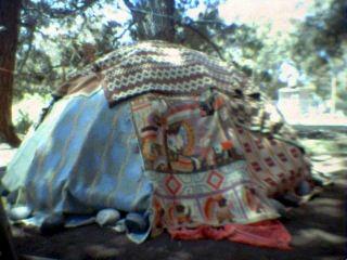 cabaña de ramas y mantas